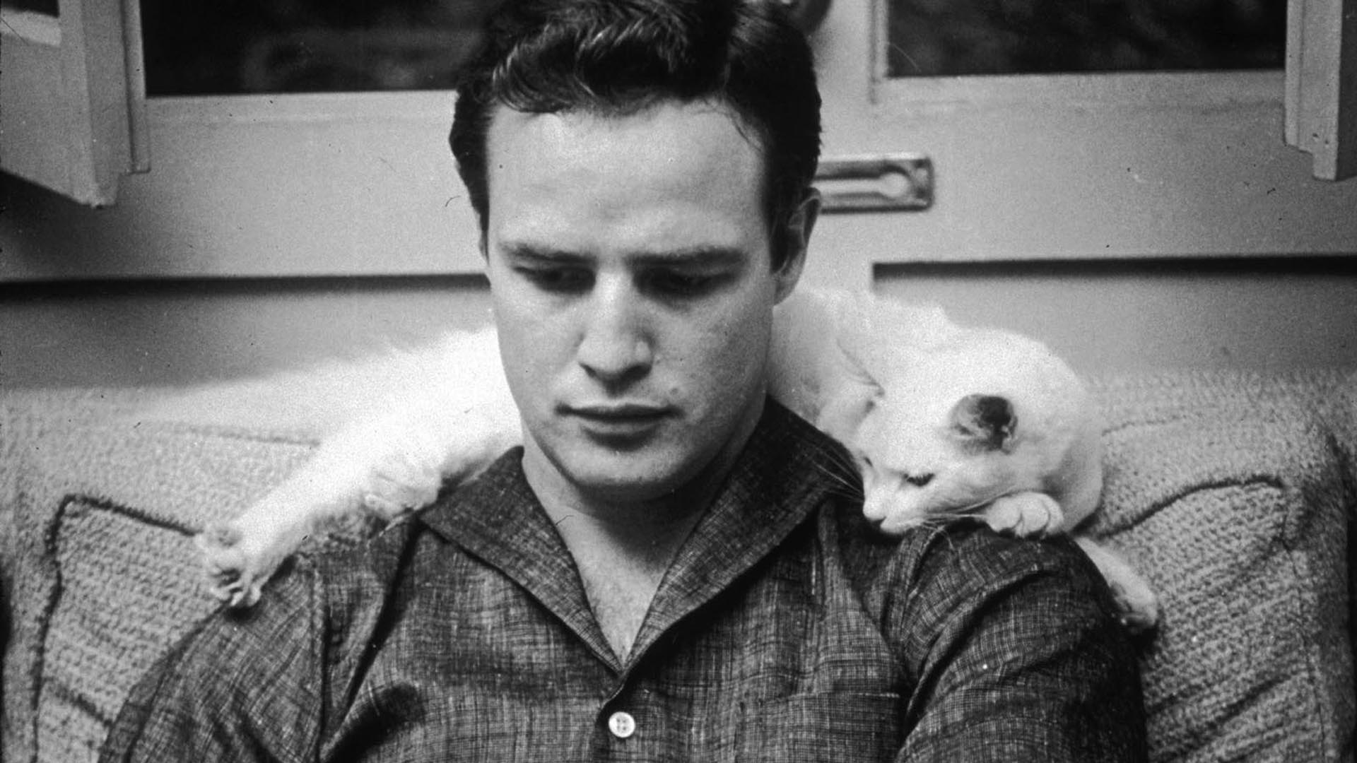 marlon brando wifemarlon brando gif, marlon brando 2004, marlon brando wiki, marlon brando old, marlon brando films, marlon brando wikipedia, marlon brando movies, marlon brando 2003, marlon brando wife, marlon brando kinopoisk, marlon brando documentary, marlon brando dolce gabbana, marlon brando oscar, marlon brando tumblr, marlon brando island, marlon brando larry king, marlon brando was perhaps, marlon brando vk, марлон брандо фото, marlon brando imdb